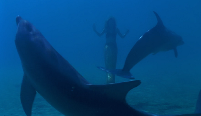 File:Frolicing With Dolphines.png