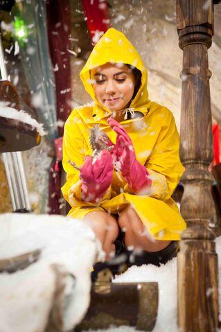 File:Nixie wearing a raincoat.jpg