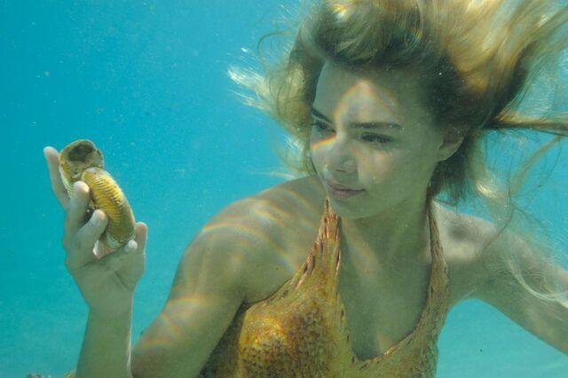 File:Bella Finds a Rare Shell.jpg