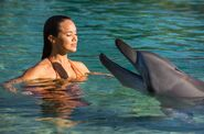 Mimmi And Dolphin