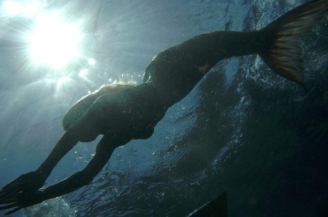 File:Rikki Swimming.png