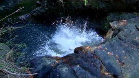 H2O JUST ADD WATER Season 2 Trailer