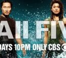 Hawaii-Five 0 Wiki