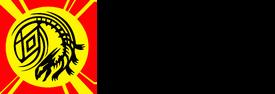 Star dragon dynasty logo alt