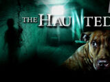 The Haunted (TV series)