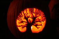My first ever pumpkin
