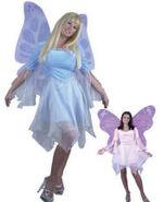 Womens Fairy Costume