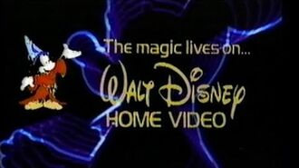 Walt Disney and You (1982)