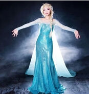 Frozen-Snow-Queen-Elsa-Costume-Custom-Size-For-Adult-and-Kids-Princess-Dress-Blue-Sequined-Cosplay
