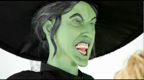 Wicked Witch - Spirit Halloween