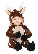 Infant-baby-deer