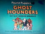 Pound Puppies: Ghost Hounders