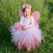 Pink Fairy Costume