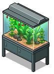 Waasa aquarium(1)