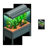 Waasa aquarium