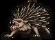 Quest hedgehog