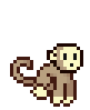 Pet-Monkey-Desert