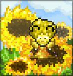 CC SunflowerCamo