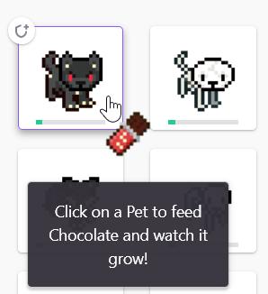 Feeding Pets