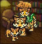 LOKIOFASGARD - Kitten Kostume - Tigers in the Library