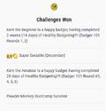 Challenge award.png