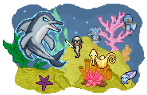 Promo dolphin quest