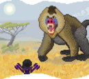 Monstrous Mandrill and the Mischief Monkeys