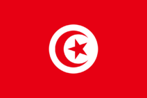 Thunghotiienflagge