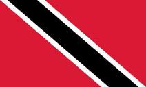 Tonidadflagge