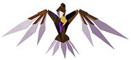 Hawk 10-12