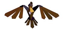 Hawk 04-05