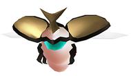 Beetle 08-09