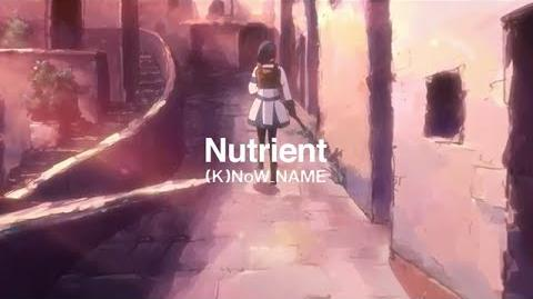 Nutrient - (K)NoW NAME