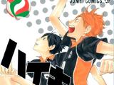 Hinata and Kageyama (Volume)