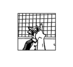 Bokuto's Hidden Dejected Mode
