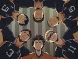 Les fous de volley