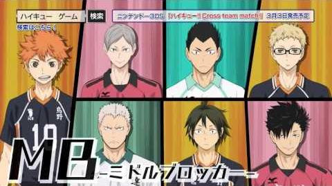 3DS - Haikyuu!! Cross Team Match