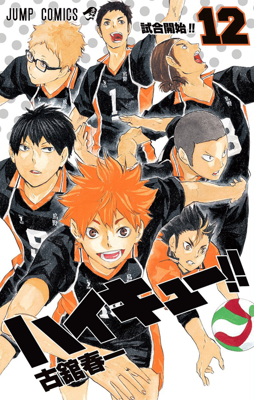 Vol Haikyu!! 30
