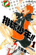 Volleyball Boy 1 cover