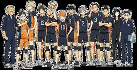 Karasuno equipe