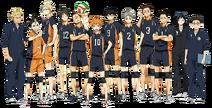 Karasuno Team