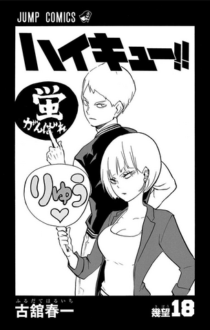 File:Volume 18 Inner Cover.png