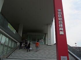 Sumida III (real)