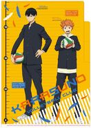 Kagehina clear file