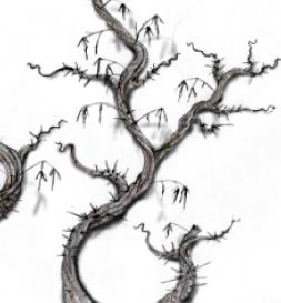 Tween Thorn