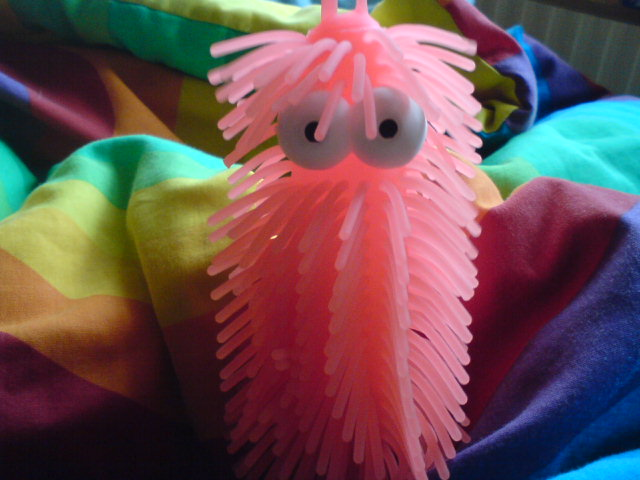 File:Hairy Worm.jpg
