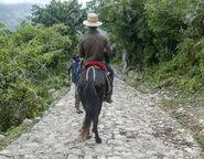 Haitian kid guiding a man on a horse