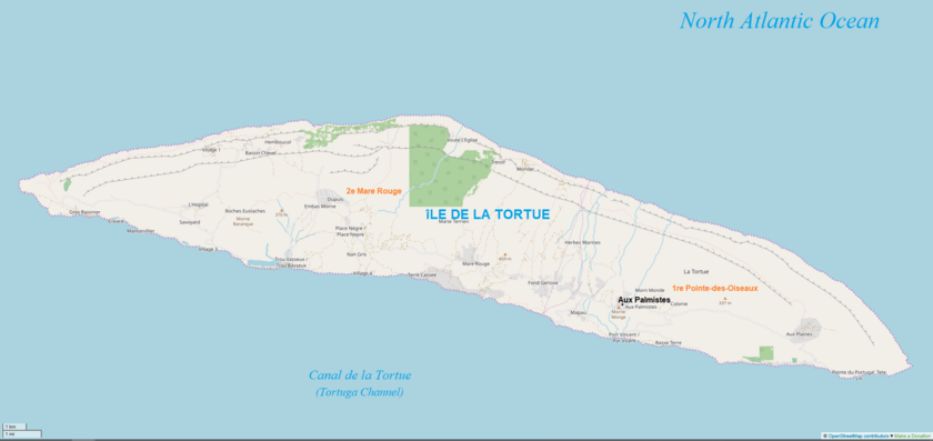 Tortue 902