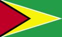 Guyana flag large