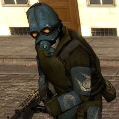 Ditto. The skin for this particular soldier can be found in <i>Half-Life 2'</i>s